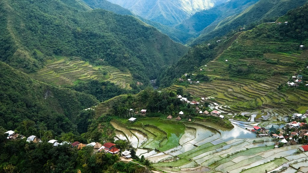 Banaue village homes and rice terraces