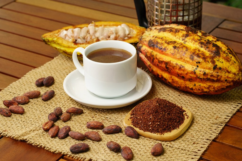 Cacao pods, beans, and hot chocolate