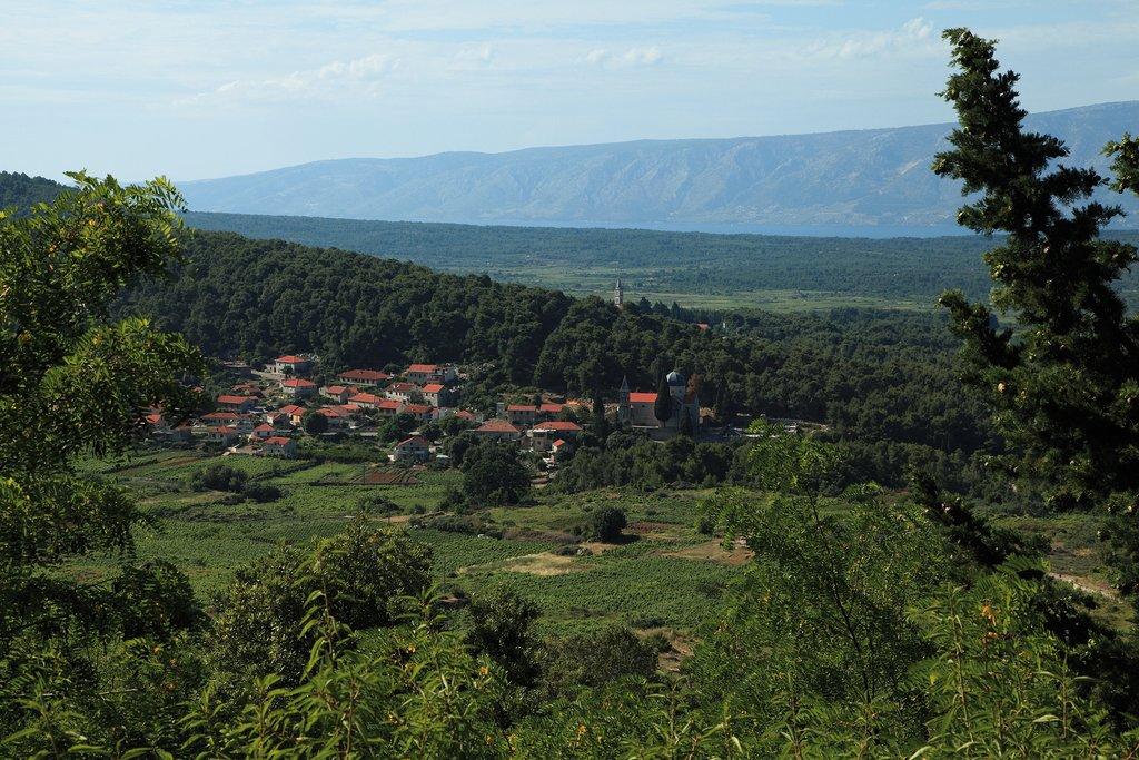 Croatia - Hvar - Vineyard-laden hills around the village of Svirče