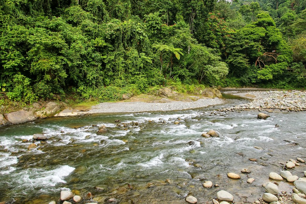 Enjoy the amazing nature as you trek through Gunung Leuser NP