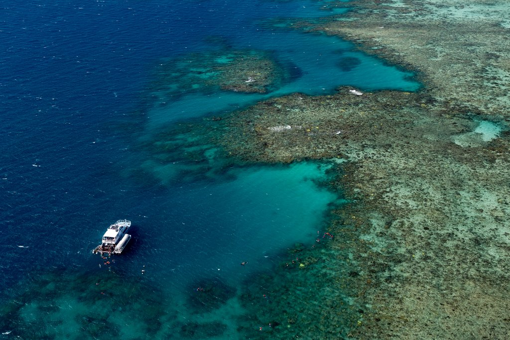 Great Barrier Reef near Cairns, Australia
