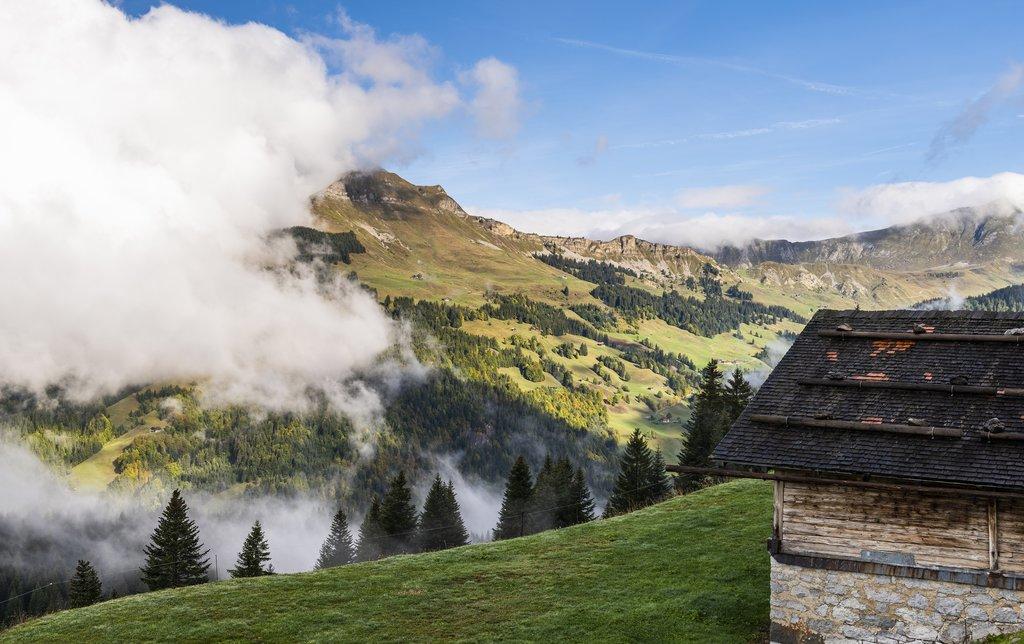 Mountain cabin in the Grand Bornand