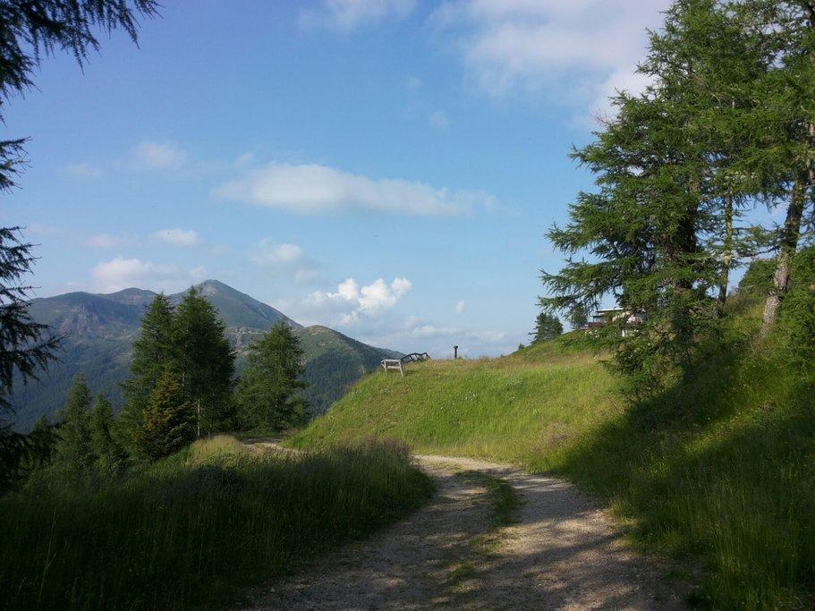 A cycling path on Mount Panarotta