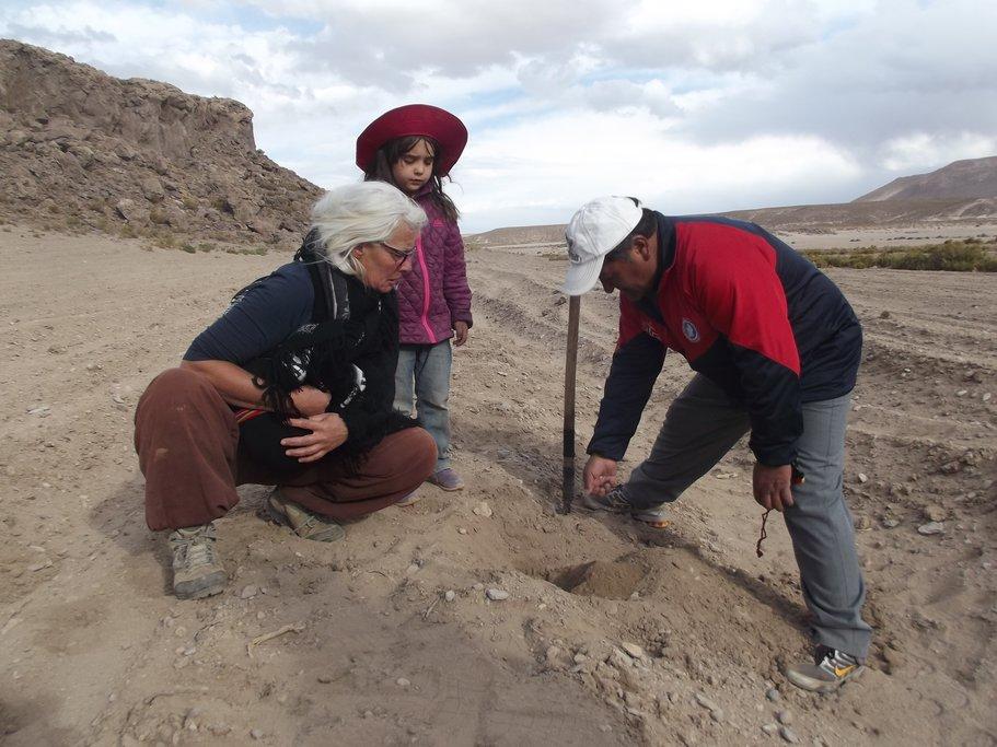 Planting quinoa near Santiago K.