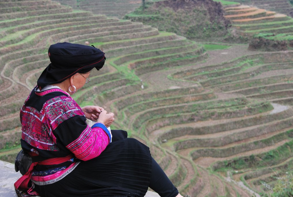 Longsheng Rice Terraces resemble a dragon's scales