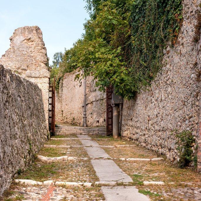 Road to the Canegliano castle