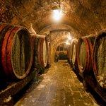 Wine Tour in Bellet & Saint Paul de Vence