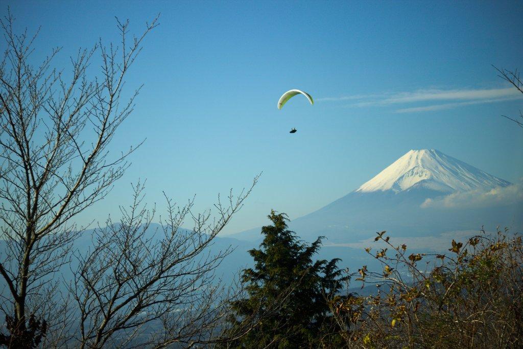 The iconic Mt Fuji