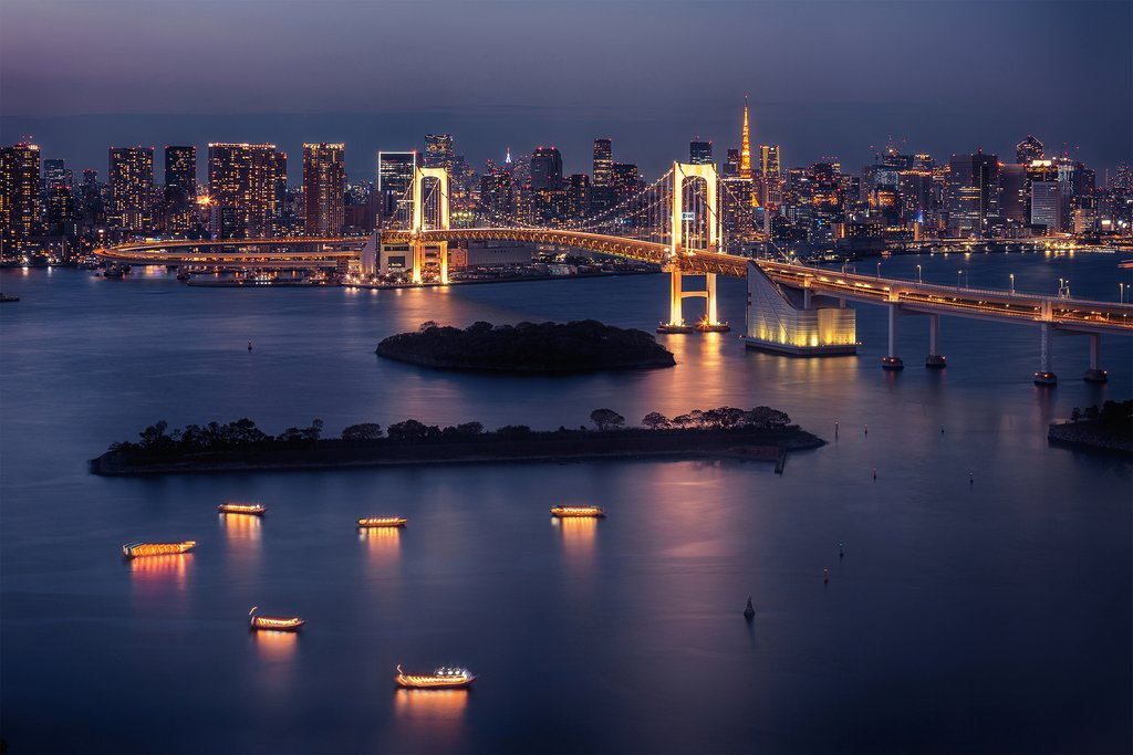 The Tokyo skyline at night.