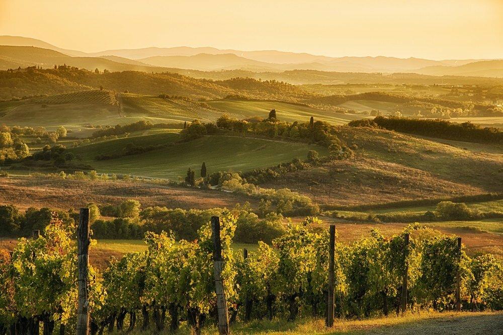 The Idyllic Landscape of Tuscany