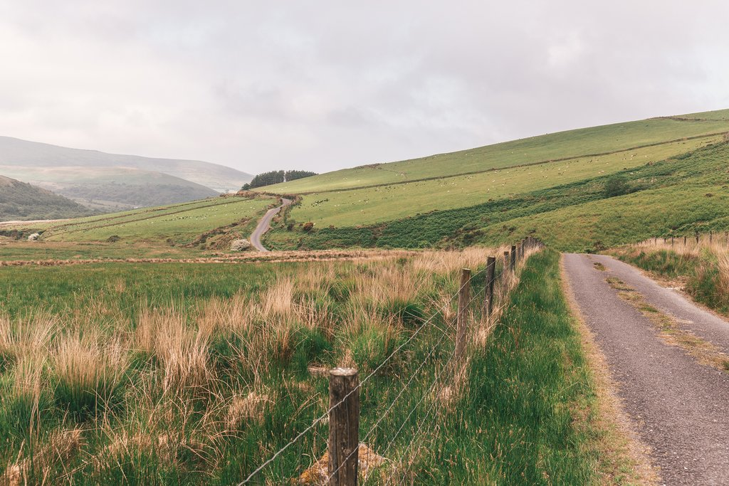 Along the hills