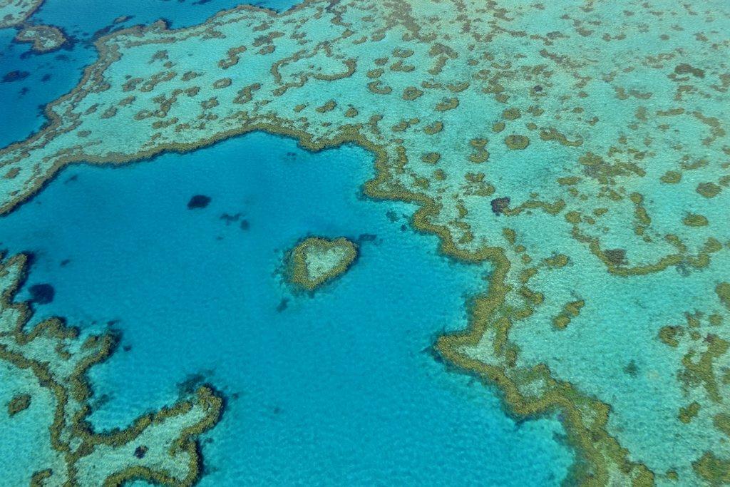 Heart reef at Australia's Great Barrier Reef