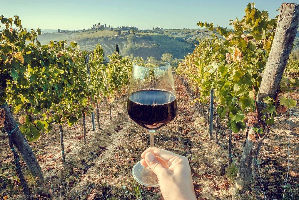 Enjoying a glass in the vineyard