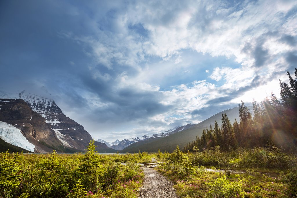 Berg Lake Trail in Mount Robson Provincial Park