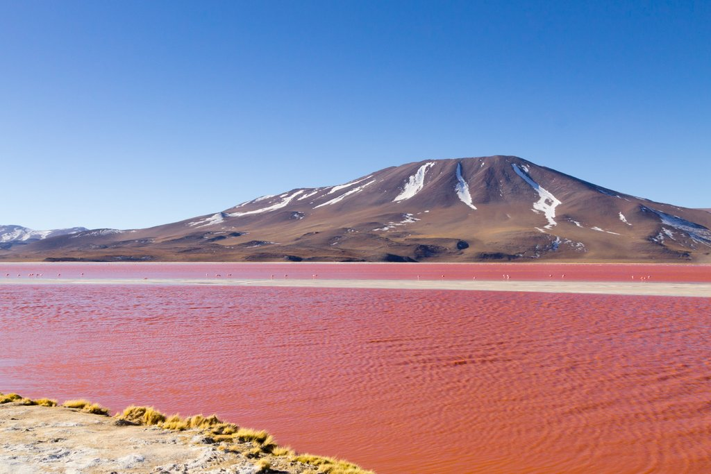 The Red Lagoon