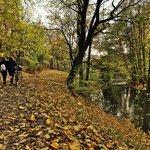 The river walk in Oslo is pretty in all seasons
