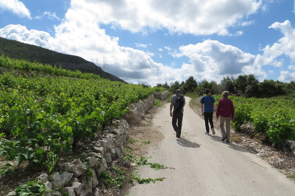 Hike in the Konavle countryside, beyond Dubrovnik