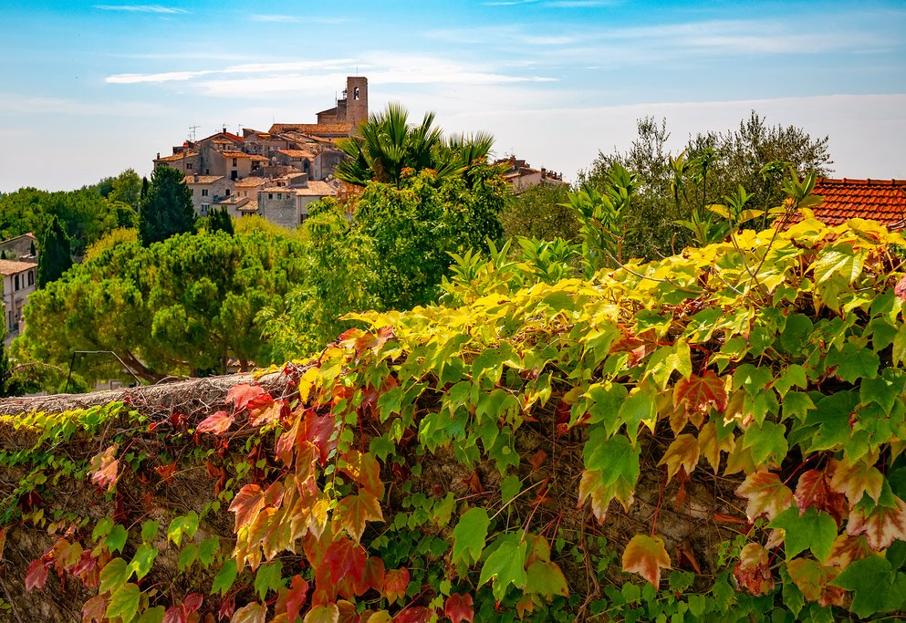 Provençal scenery