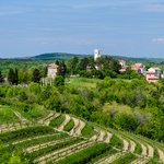 Oprtalj and the Istrian landscape