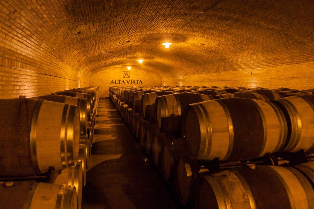 A wine cellar in Chacras de Coria