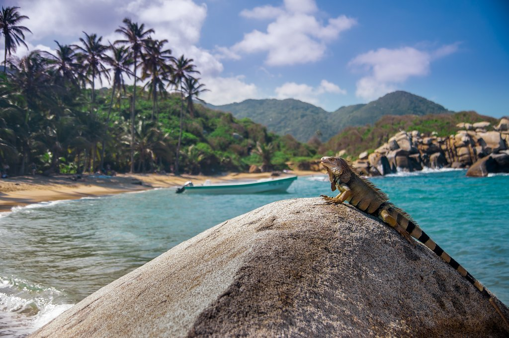How to Get from Bogotá to Tayrona National Park