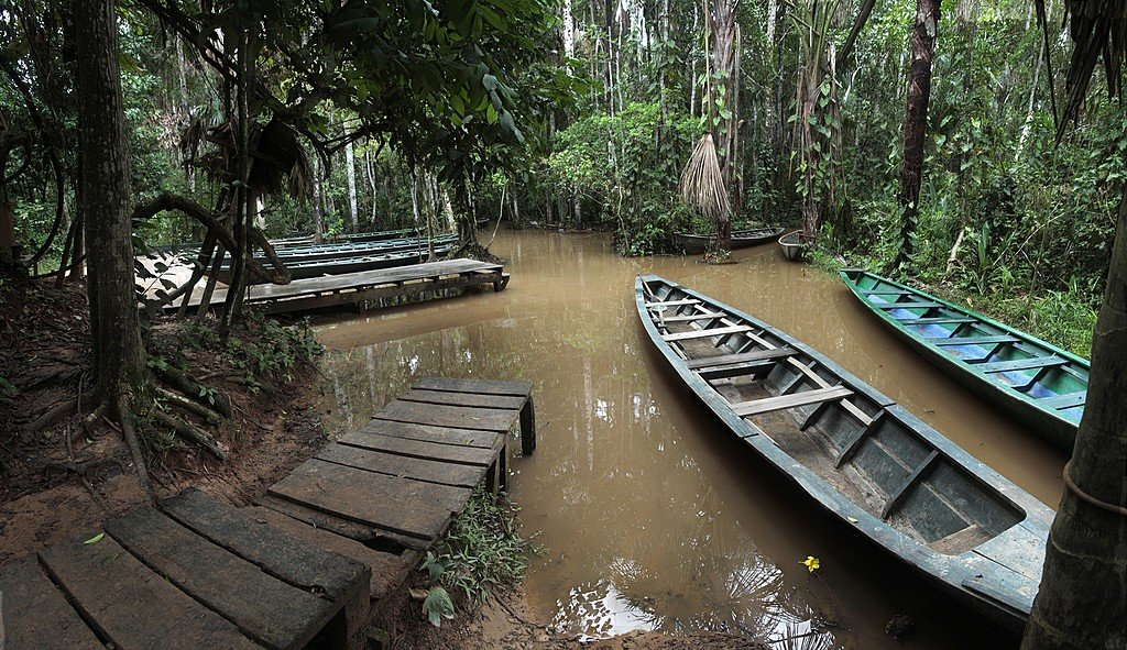 Wooden canoes on a tributary of the Amazon River