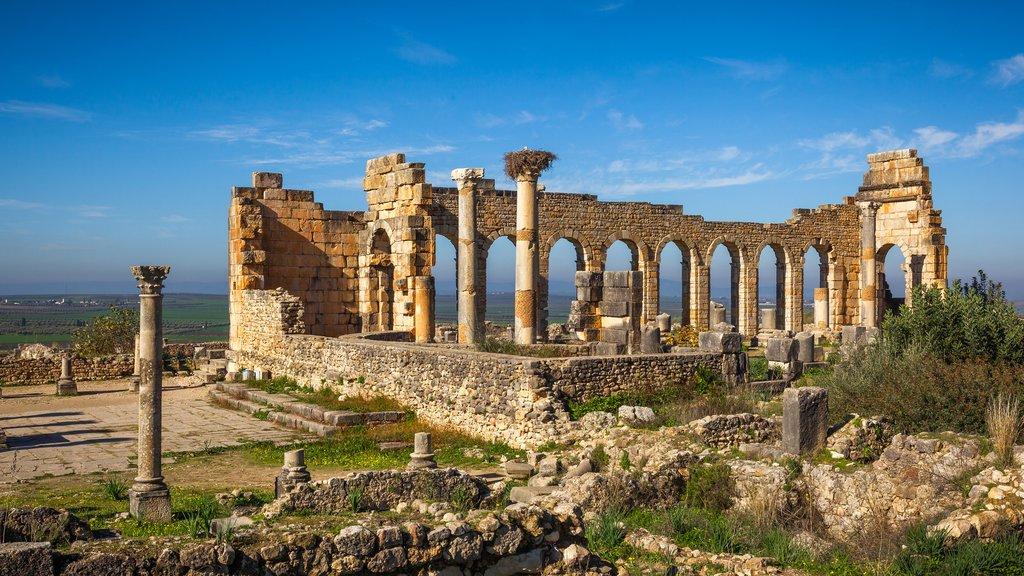 Roman ruins of Volubilis