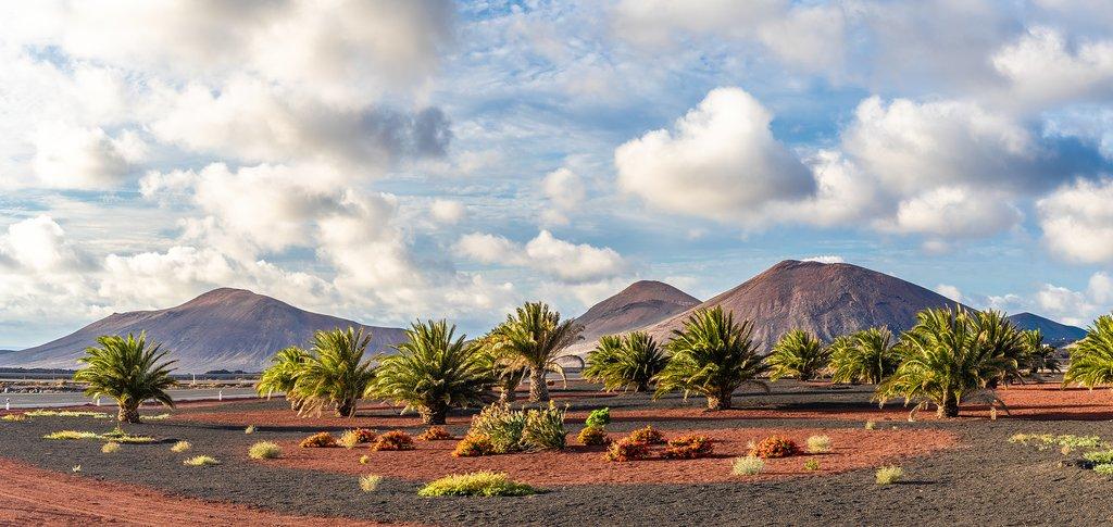 Volcanic Landscape of Lanzarote