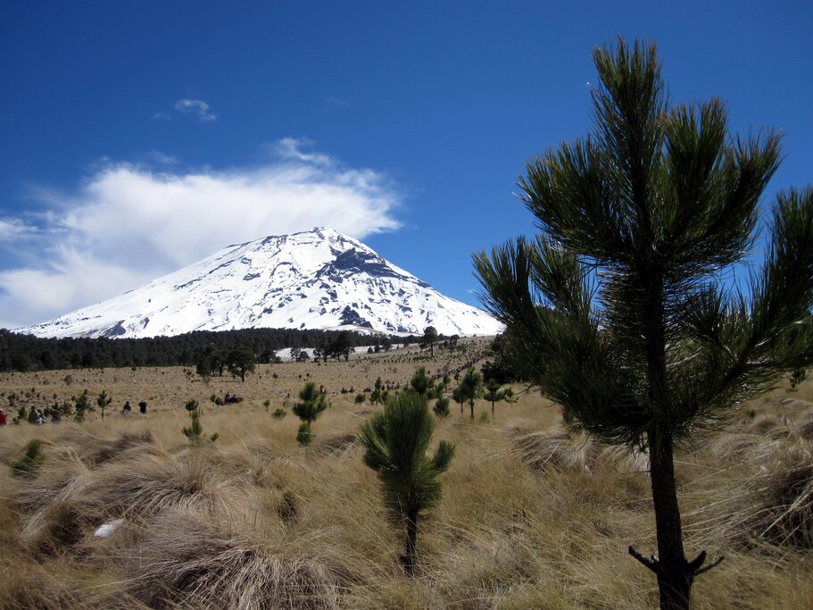 View of the volcano from the plains