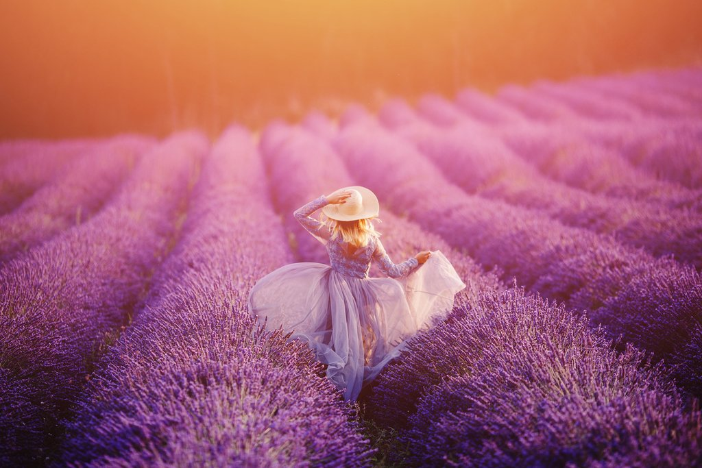 Say goodbye to Provence