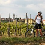 Cycle in Rovinj's Countryside