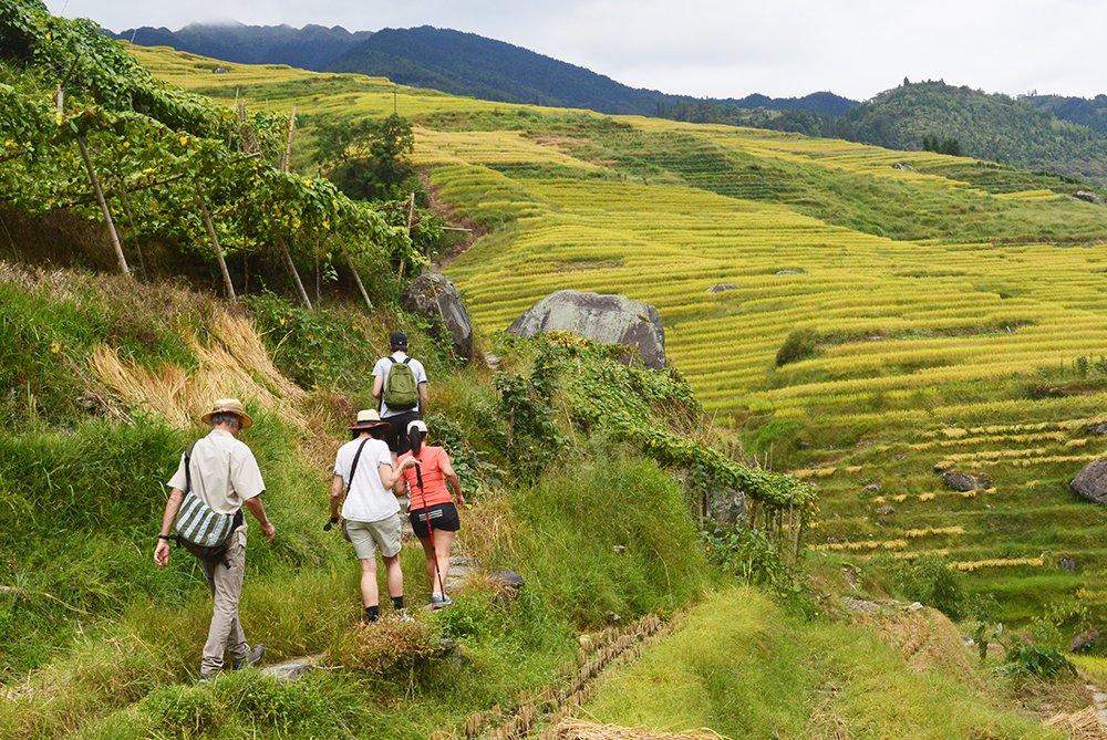 Hike the Real Beautiful Parts of Longji Rice Terraces