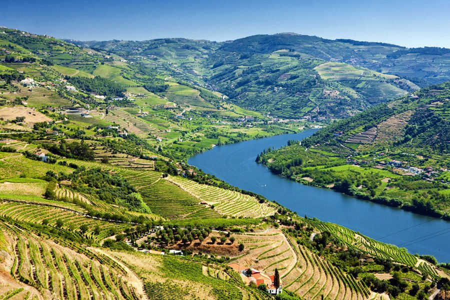 The Douro Valley Wine Region