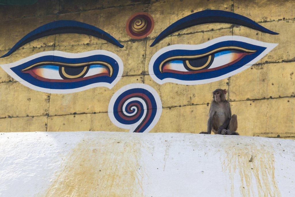 The all-seeing eyes of Buddha at Swayambhunath