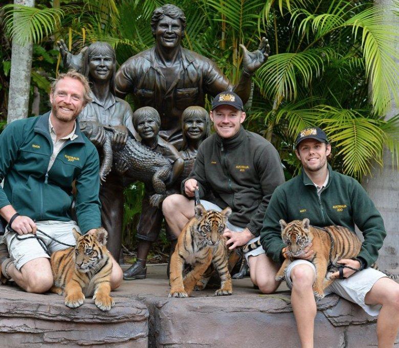 Meet the animals at Australia Zoo