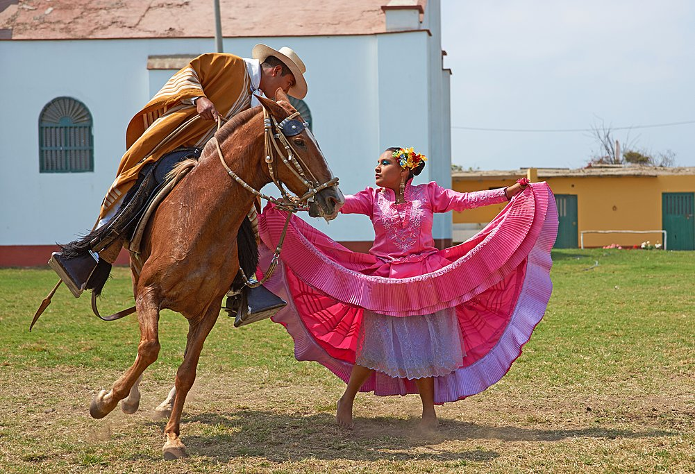 Traditional folk dancing with Peruvian Paso horses