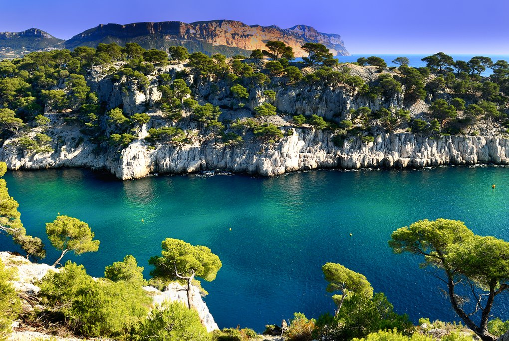 Port Pin in Cassis