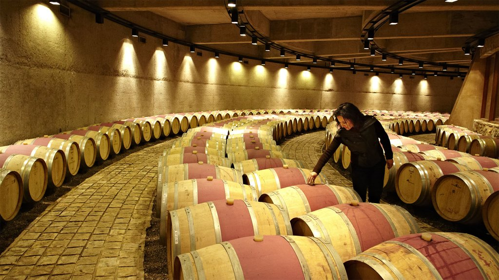 Inside the wine cellar where wine is stored in barrels