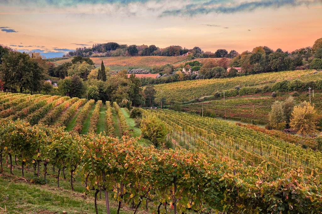 Countryside of Emilia Romagno