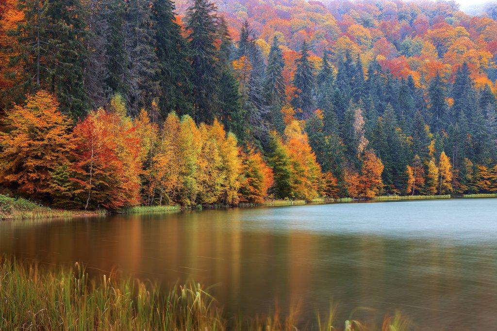 Saint Ana Lake in Autumn