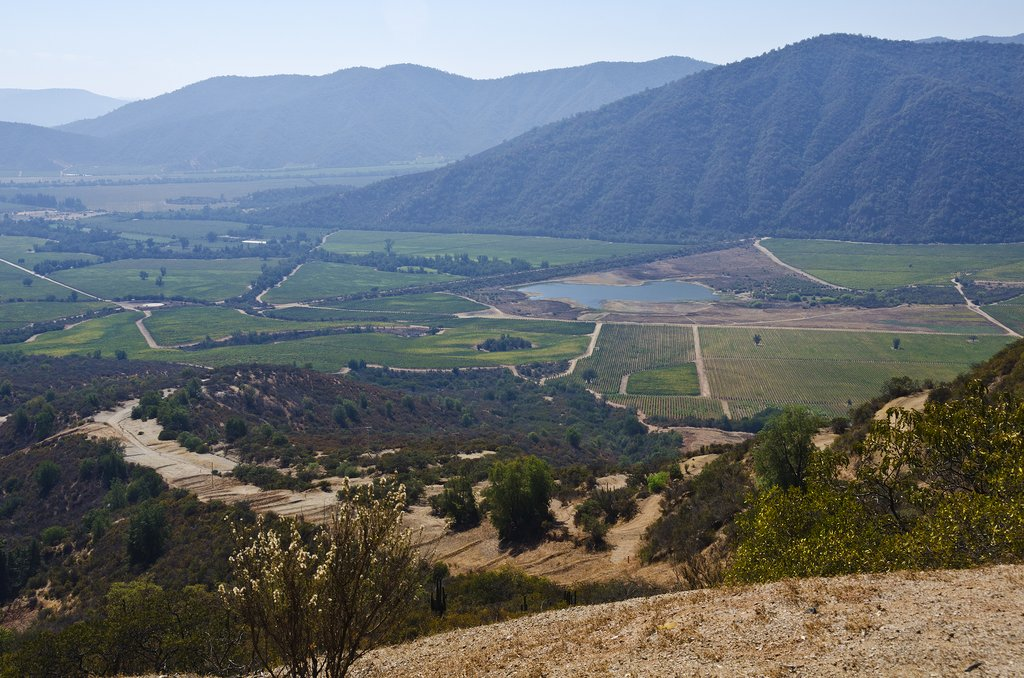 Beautiful Casablanca Valley landscape