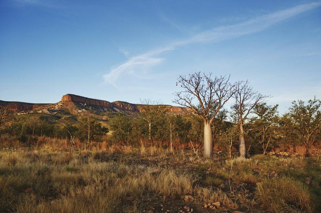Cockburn Ranges ©Tourism Western Australia