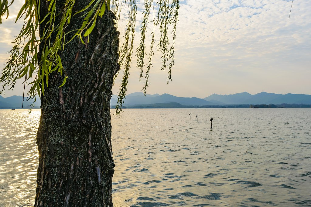 How to Get from Huangshan City to Hangzhou