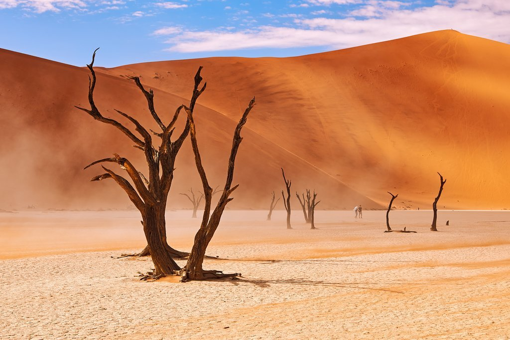The extraordinary landscapes of the Namib Desert