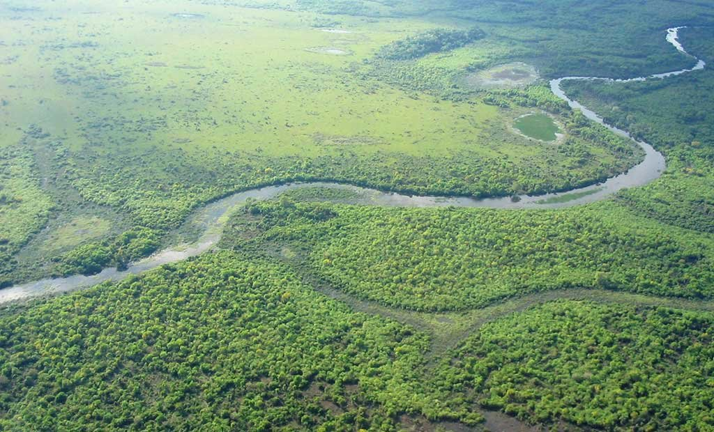 Aerial view of the Pantanal wetland