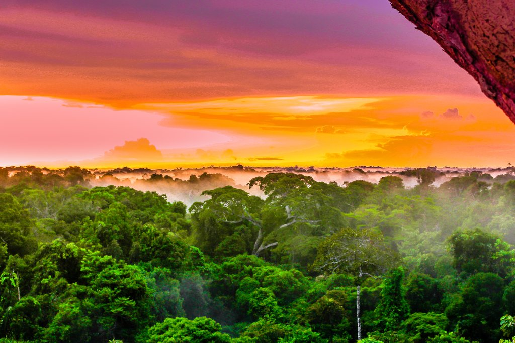 Araracuara Canyon is located in the Amazon rainforest