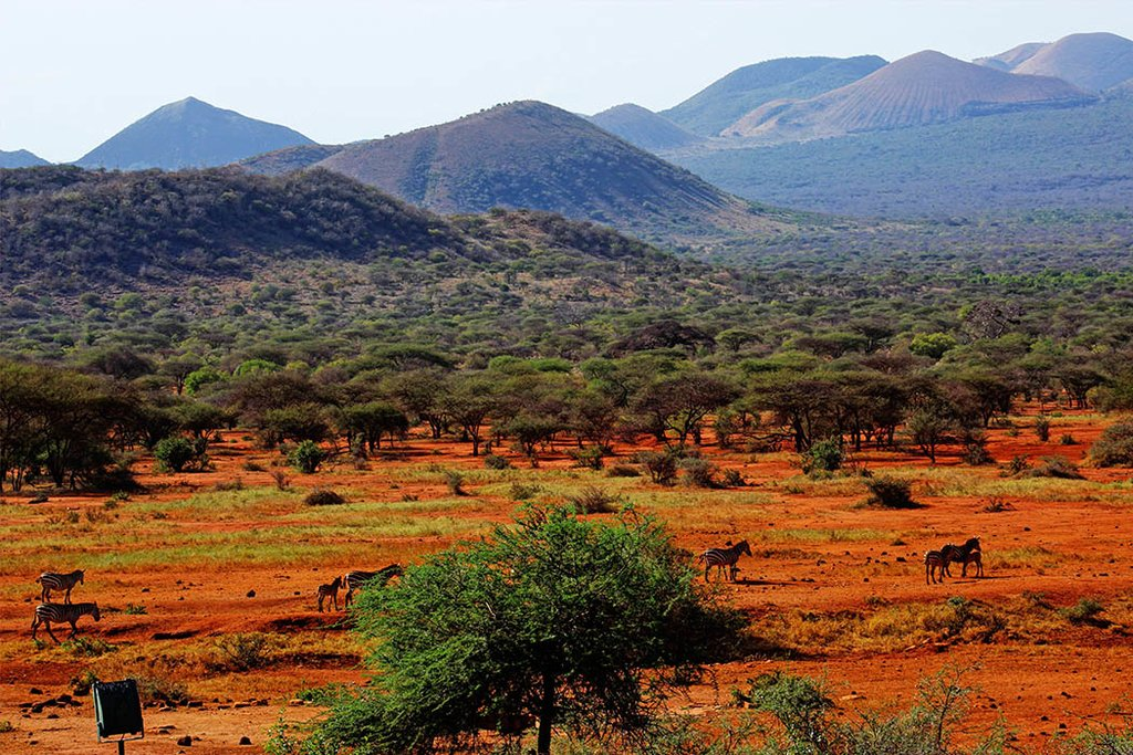 Beautiful tsavo park