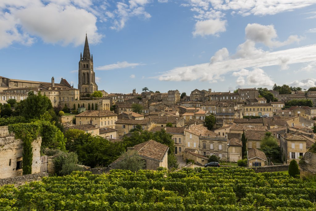 The village of St Emilion