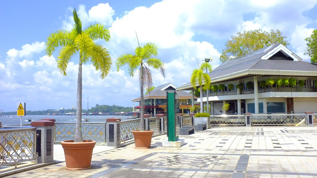 Palm trees, seafront, bund in Brunei.