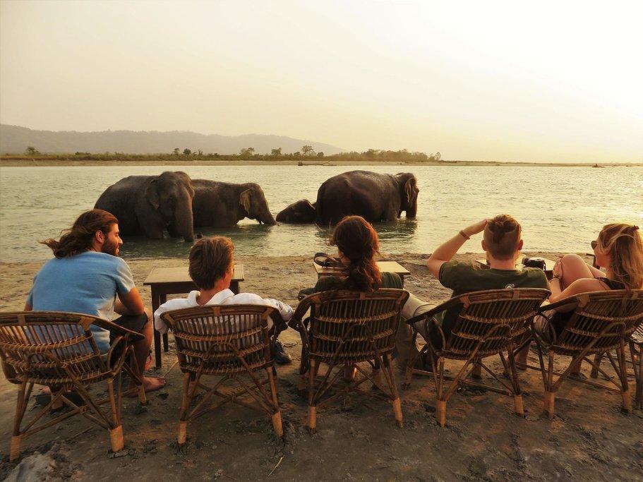 Elephant bathing in the river in Chitwan